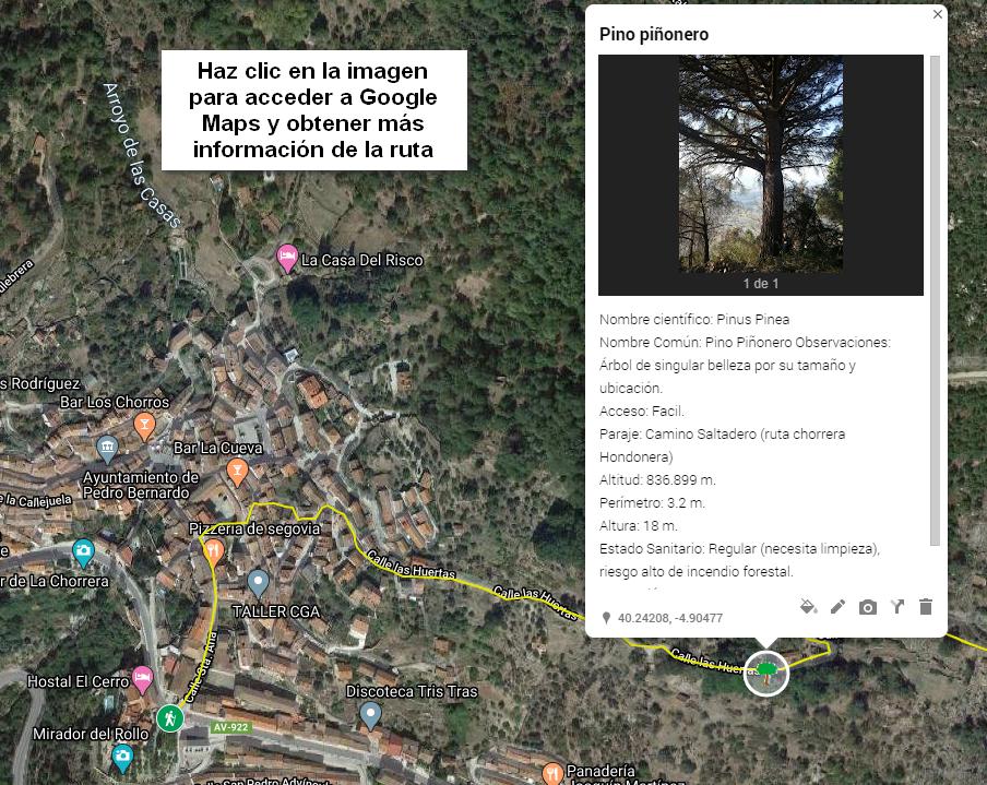 Haz clic en la imagen para acceder a GOOGLE MAPS